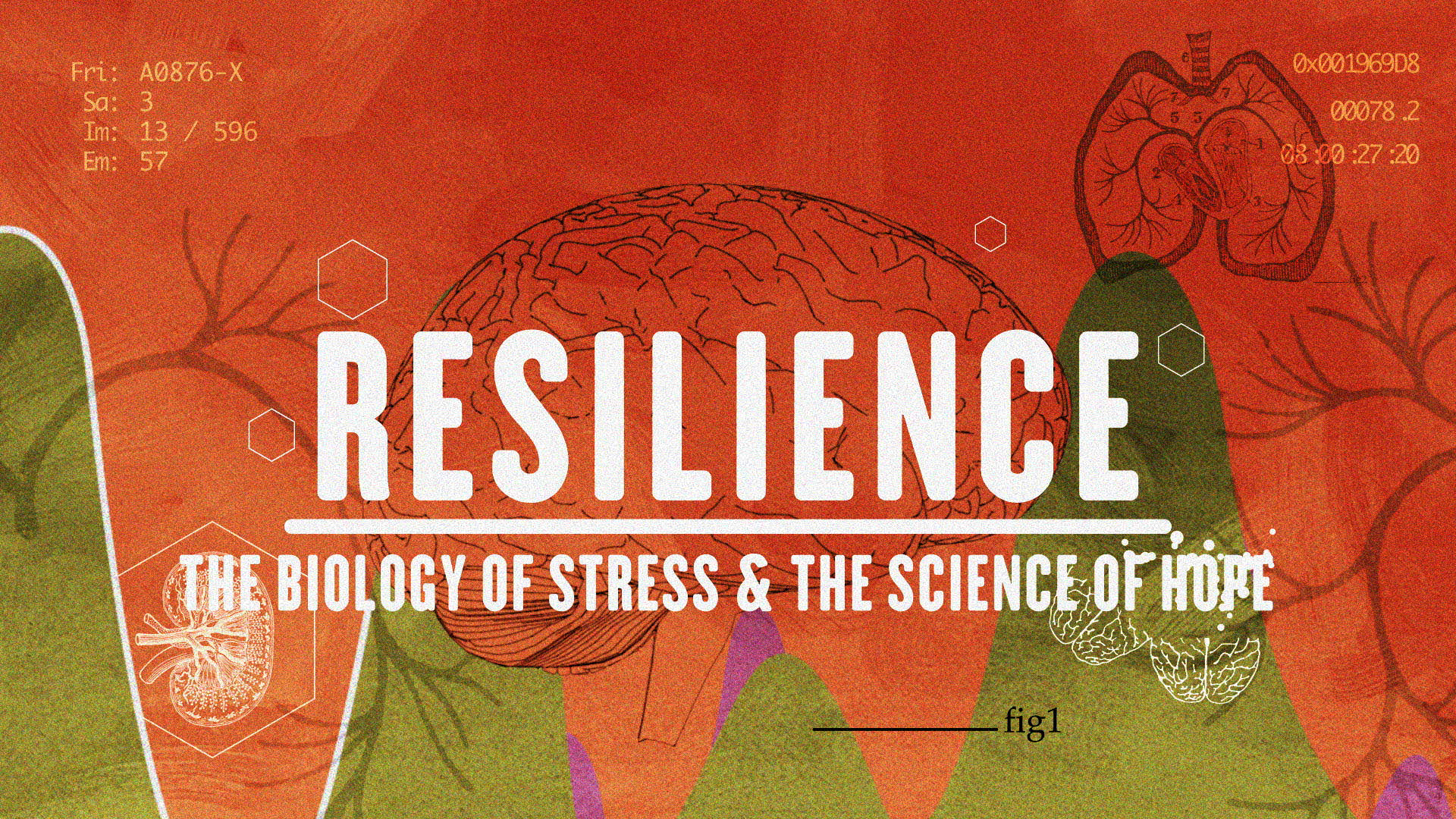 RESILIENCE: The Biology of Stress & the Science of Hope
